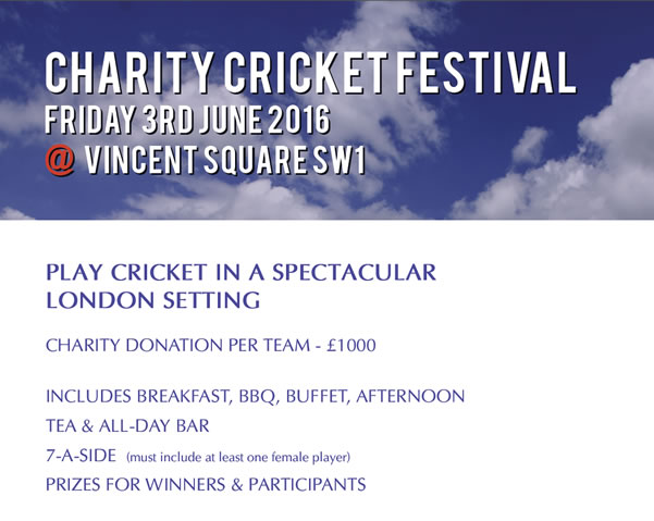 charity-cricket-festival.jpg